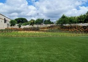 Southwest Greens Artifical Grass Lawn Commercial 1_0