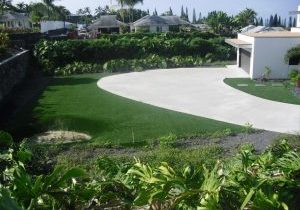 Southwest Greens Fake Grass Lawn Around a Driveway with Landscape_0