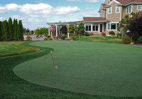 Southwest Greens Seattle Synthetic Grass for the home lawn with putting area and natural landscape 3