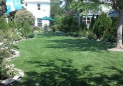 Southwest Greens Synthetic Grass Yard Landscape 3